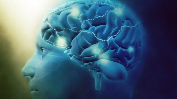Comment agir sur ses cellules pour rester en santé?